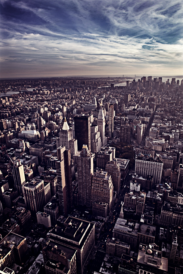 Contest_New_York_3