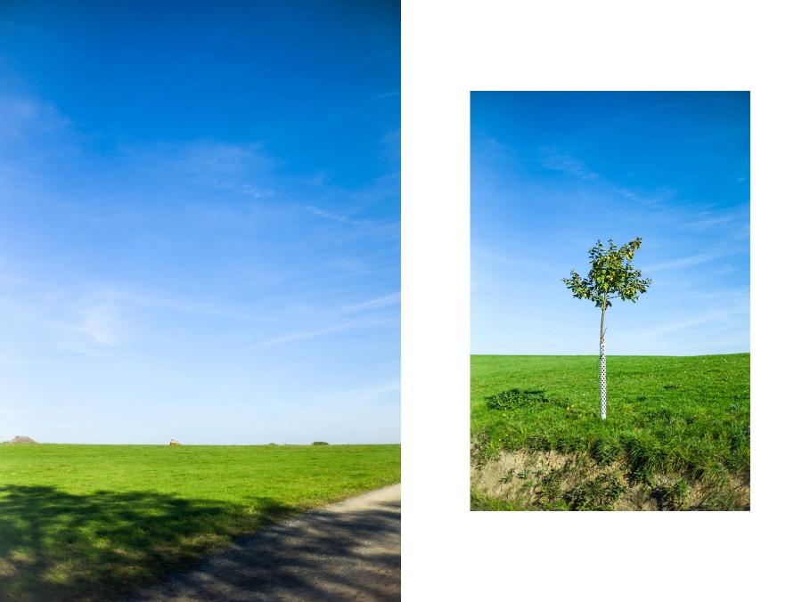 Zwei hochkant Fotos aus der Nähe von Vellmar